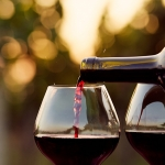 Best Sonoma County Wineries On A Budget
