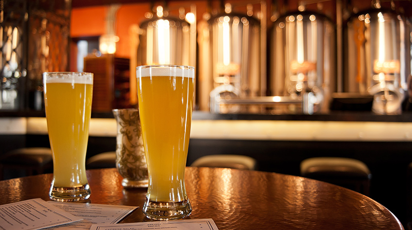 Best Sonoma County Breweries